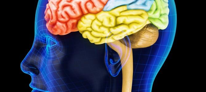 Intelligenza emotiva tra variabili personali e capacità mentali